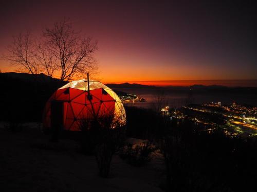 Narvik Adventures AS (Narvik) – oppdaterte priser for 2020
