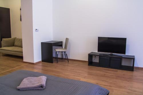 A television and/or entertainment center at Old Town Apartment 2