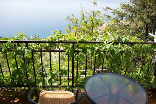 A balcony or terrace at Apartment Josip