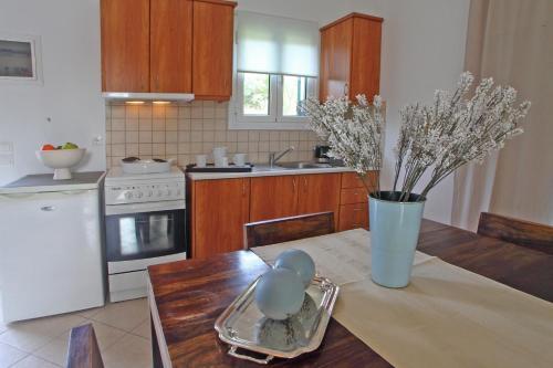 Η κουζίνα ή μικρή κουζίνα στο Echinades Resort