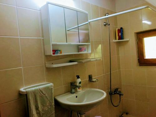 Ein Badezimmer in der Unterkunft Šumski dvor