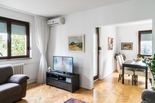 A television and/or entertainment center at Sensitive Apartment
