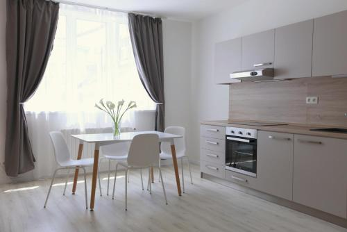 A kitchen or kitchenette at City Center Best Place Apartments