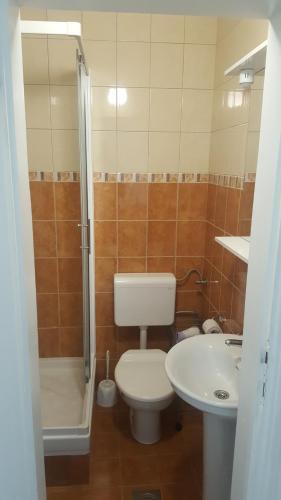 A bathroom at Apartments Ponta