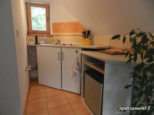 Кухня или мини-кухня в Apartamencik z Widokiem Na Giewont