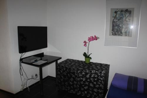 A television and/or entertainment center at Seefeld Appartement