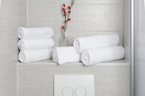 Vonios kambarys apgyvendinimo įstaigoje Apartment City Lenaustrasse