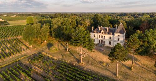Vue panoramique sur l'établissement Château Perrin d'Hoge