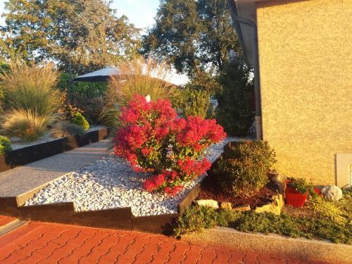 A garden outside Ma maison fleurie proche aéroport, Eurexpo