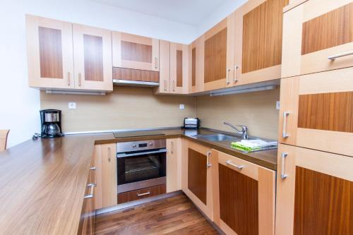 A kitchen or kitchenette at Luxury Apartments Bolf