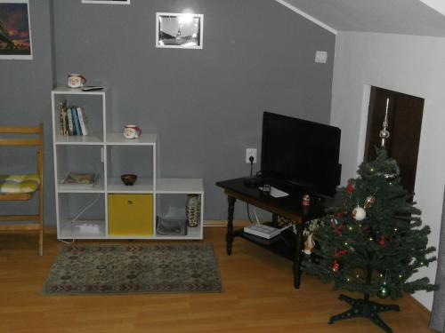 A television and/or entertainment center at Mountain View Apartment in Top City Center