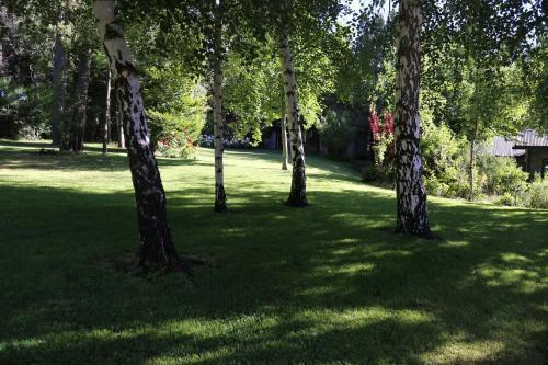 Un jardín fuera de Torcazas
