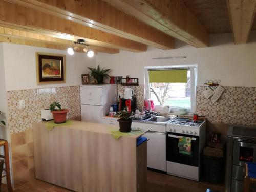 "A kitchen or kitchenette at Kuća za odmor ""Jasna"" (Holiday home ""Jasna"")"
