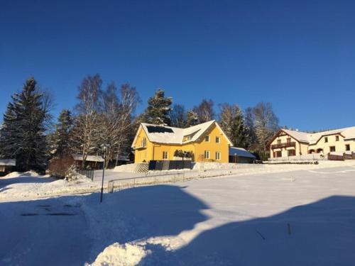 Apartmán s Výhledem na jezero v zimě