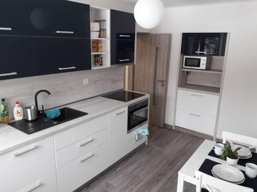 Ett kök eller pentry på Apartman Dominik