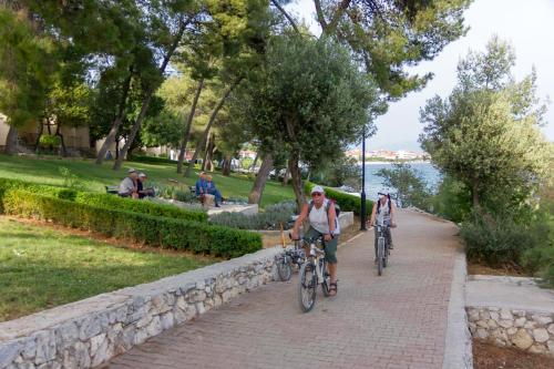 Cycling at or in the surroundings of Apartman ADRIATIC