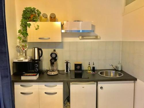 A kitchen or kitchenette at Le 104