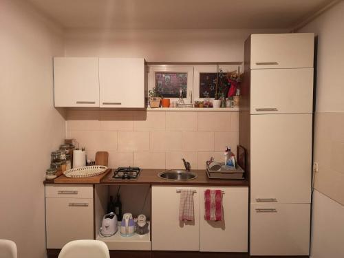 Kuchyňa alebo kuchynka v ubytovaní Studio apartman Nina
