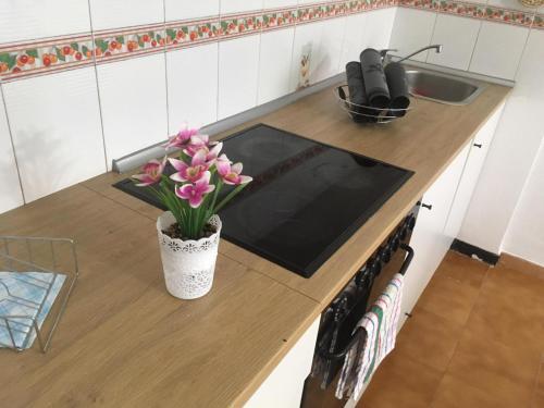 Kuhinja oz. manjša kuhinja v nastanitvi holidays Victory