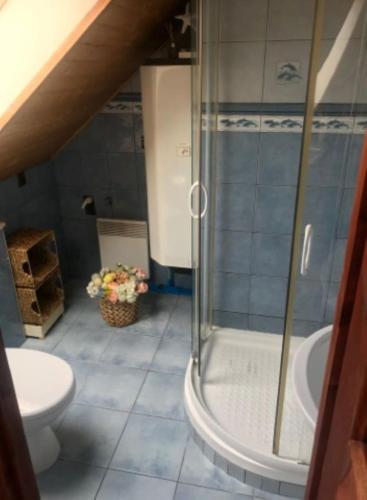 Ubytování Apartmány AlexSandra-ubytovanie pri Tatralandii Tatralandia tatralandia.rezervuj.net