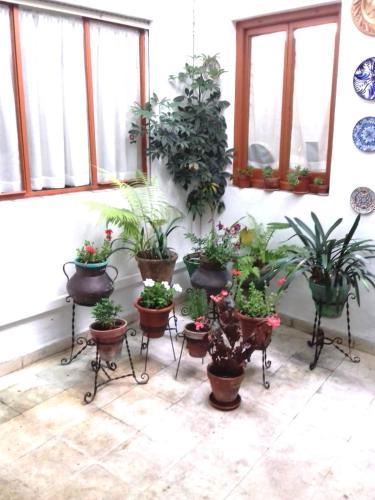 Casa Mezquita Córdoba Updated 2020 Prices