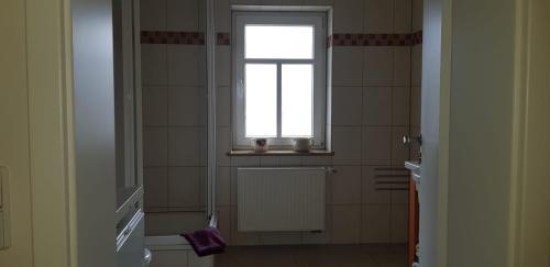 Ein Badezimmer in der Unterkunft Im Ballhaus Neuhilbersdorf