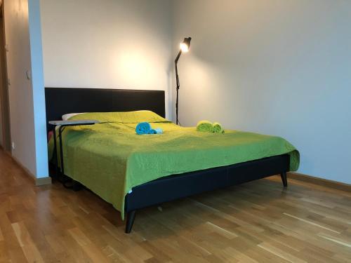 Voodi või voodid majutusasutuse Triumph Apartment toas