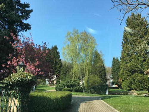 Ein Garten an der Unterkunft Villa Alfredshöhe