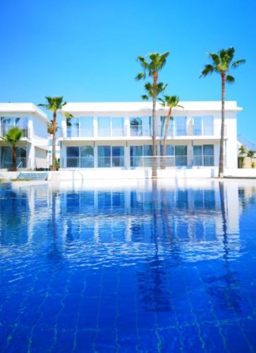 Lysithea Hotel Cypern Larnaca Booking Com