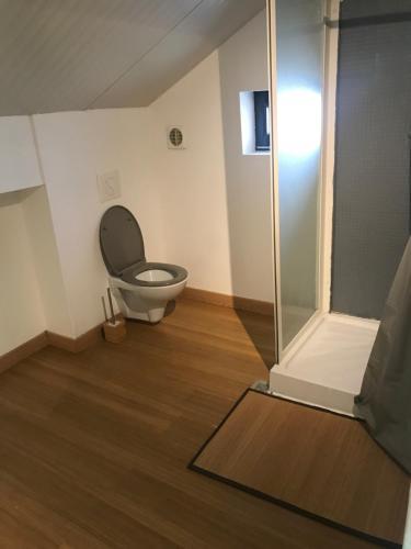 A bathroom at Loft Tout Confort Résidence du Poirier