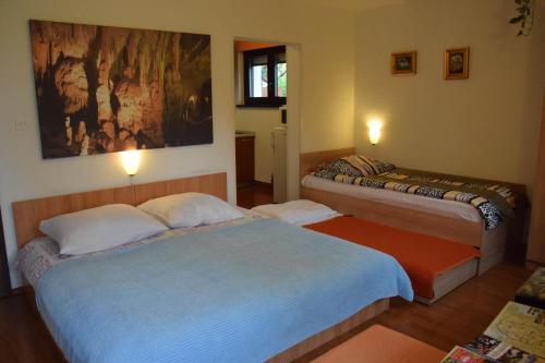 Postelja oz. postelje v sobi nastanitve Rooms Ribnikar