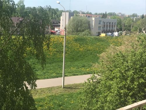A garden outside Apartment on Cherniakhovskogo 38
