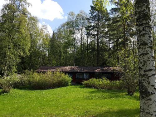 Ein Garten an der Unterkunft Stuga Lycka