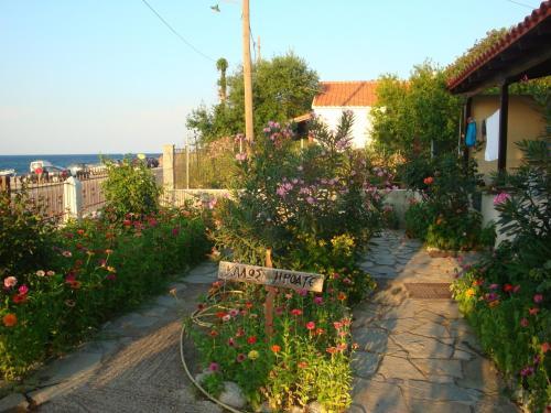 O grădină în afara Athina Apartments