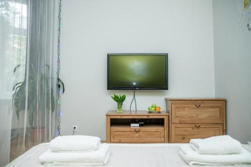 Een TV en/of entertainmentcenter bij Red Kurka Apartments