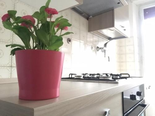 A kitchen or kitchenette at Apartment near the Vatican City 2
