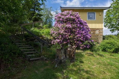 A garden outside Gubbelyckan