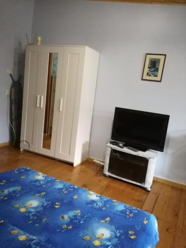 A television and/or entertainment center at Guest house Baza otdyha Vodnik