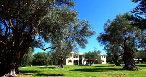 A garden outside Olivastro Villa