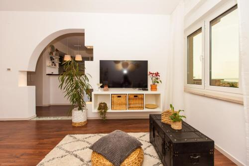 A television and/or entertainment center at Apartments Musicology