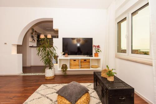 TV/Unterhaltungsangebot in der Unterkunft Apartments Musicology