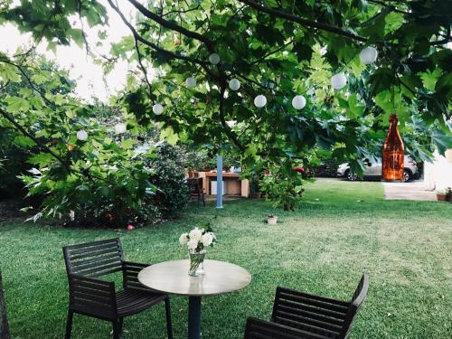 A garden outside Plane Tree House