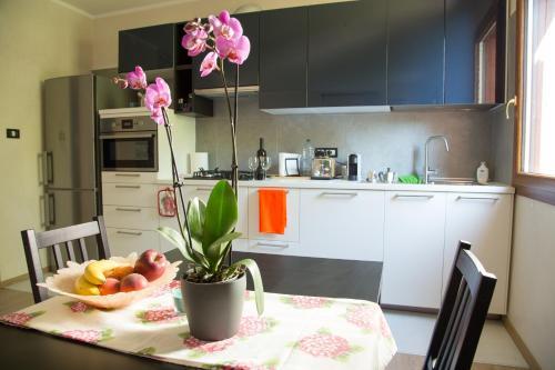 Cucina o angolo cottura di Appartamento con giardino Le Querce