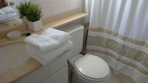 Un baño de Santiago Centro