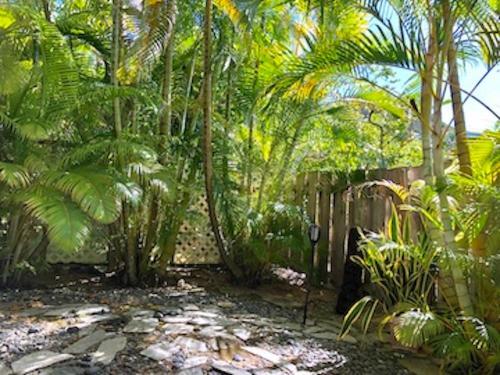 Jardín al aire libre en Lovely Lanikai Studio, Legal Vacation Rental
