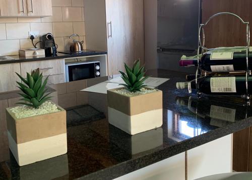 A kitchen or kitchenette at The Loft #5 Franschhoek