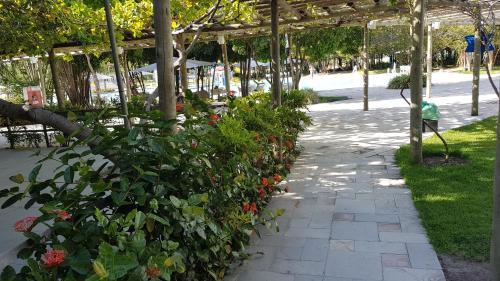 A garden outside Residence Resort - Barra de São Miguel