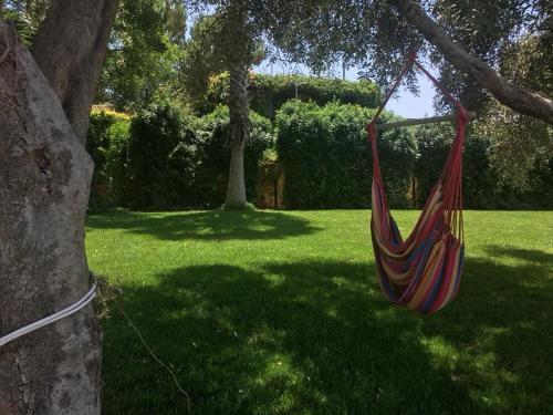 A garden outside Le Case Del Vivaio
