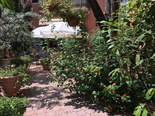 A garden outside Residence Gloria