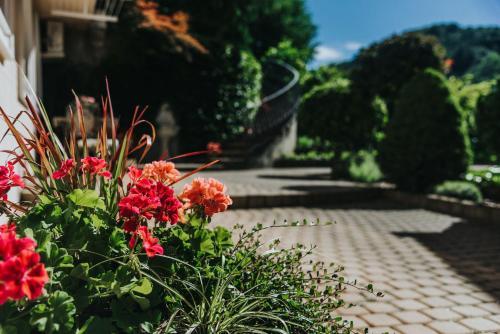 Ein Garten an der Unterkunft Apartmaji Urška